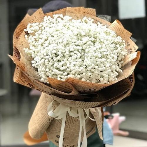bó hoa bi trắng