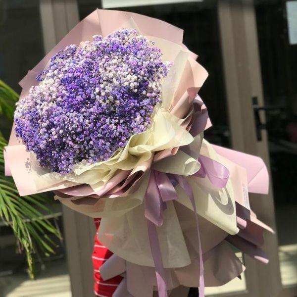 hoa bi tím đẹp