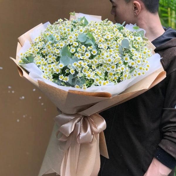 ý nghĩa hoa cúc tana