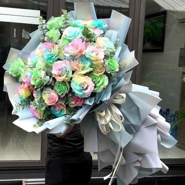 hoa hồng Ecuador 7 màu